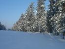 zhemchuzhina-karelii-foto-2