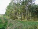 korkinskoe-dnp-foto-4