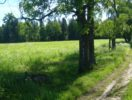 staraya-melnica-foto-4