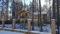 kottedzh-191-k-v-m-ryadom-s-roshhino
