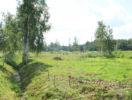 uchastok-10-sotok-v-volochaevke-foto-1