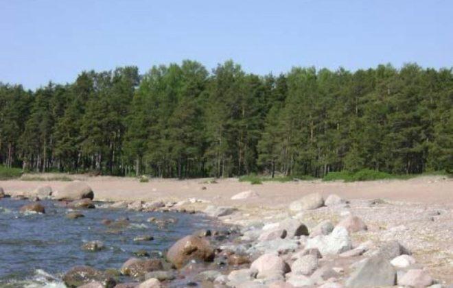 uchastok-18-sotki-na-beregu-zaliva-foto-1