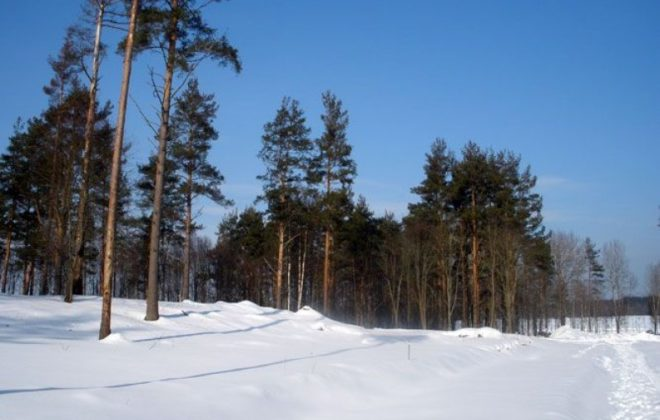 uchastok-17-sotki-u-reki-privetnaya-foto-1
