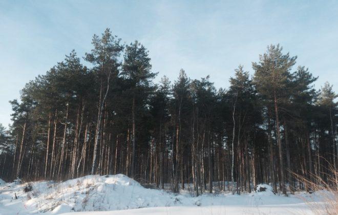 uchastok-17-sot-ryadom-s-privetninskim-karerom-foto-1