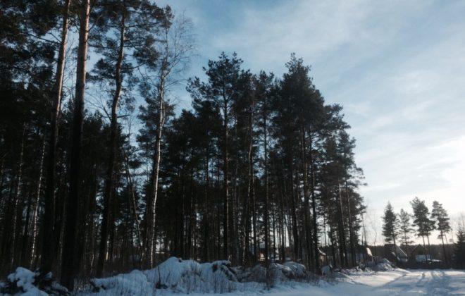 uchastok-30-sot-ryadom-s-privetninskim-karerom-foto-1