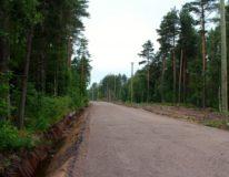 uchastok-6-sot-ryadom-so-smolyachkovo