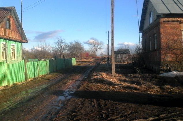 uchastok-15-sotok-v-derevne-gayanshhina-foto-1